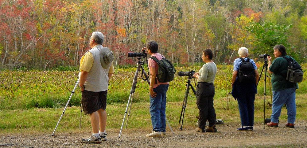 Photo-walkers at Old Horse shoe Lake, are ready to photograph.